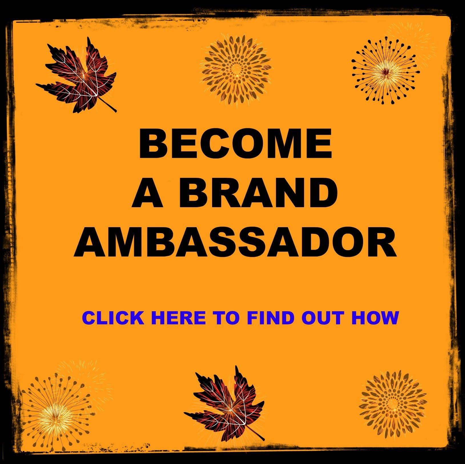 How to become a brand ambassador for The Spice People.