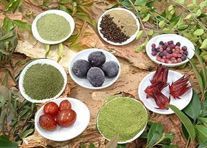 bush spices